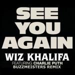 『ワイルド・スピ-ド』SKY MISSION ポール・ウォーカーに捧げる名曲「See You Again」