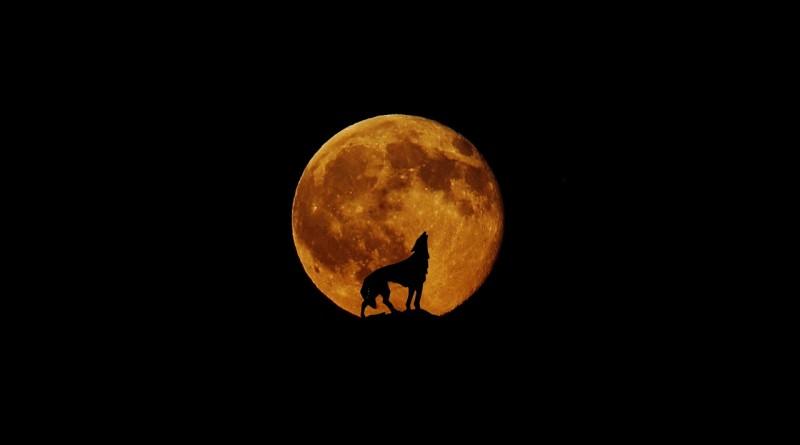 moon-830444_1280