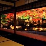 【京都】一度は見たい絶景の紅葉スポット!part2